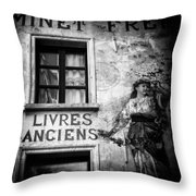 Old Books Throw Pillow by Dave Bowman