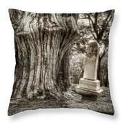 Old Friends Throw Pillow by Scott Norris