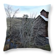 Old Grain Barn Throw Pillow by Steve McKinzie