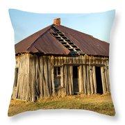 Old House Place Arkansas 2 Throw Pillow by Douglas Barnett