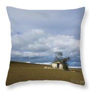 Old hut. Auvergne. France Throw Pillow by BERNARD JAUBERT