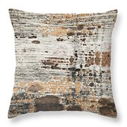Old painted wood abstract No.1 Throw Pillow by Elena Elisseeva