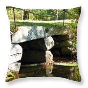 Old Stone Bridge Throw Pillow by Barbara McDevitt