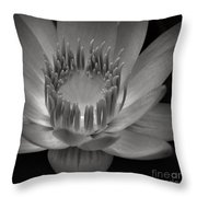 Om Mani Padme Hum Hail To The Jewel In The Lotus Throw Pillow by Sharon Mau