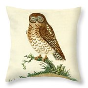Ominous Owl Throw Pillow by Philip Ralley