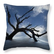 On A Misty Morning Throw Pillow by Debra and Dave Vanderlaan