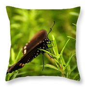 On A Rainy Day Throw Pillow by Lois Bryan