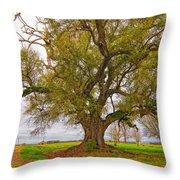 On The Delta Throw Pillow by Steve Harrington