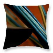 On The Edge Throw Pillow by Angelina Vick