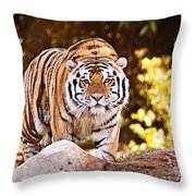 On The Prowl Throw Pillow by Scott Pellegrin