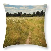 On The Summer Meadow. Russia Throw Pillow by Jenny Rainbow