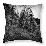 On the way to Cary Lake Throw Pillow by David Patterson