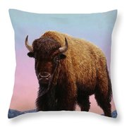 On Thin Ice Throw Pillow by James W Johnson