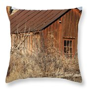 Once Occupied Throw Pillow by Fran Riley