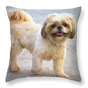 One Happy Little Dog Throw Pillow by Lainie Wrightson