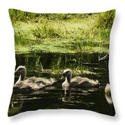 One Honk Says It All Throw Pillow by Thomas Young