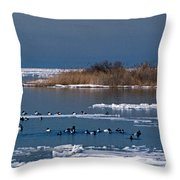 Open Water Throw Pillow by Skip Willits