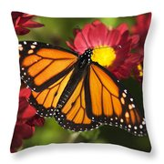 Orange Drift Monarch Butterfly Throw Pillow by Christina Rollo