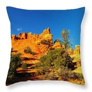 Orange Foreground A Blue Blue Sky  Throw Pillow by Jeff Swan