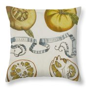 Oranges Throw Pillow by Cornelis Bloemaert
