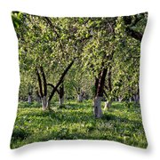 Orchard Throw Pillow by Anonymous