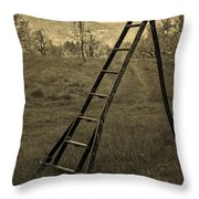Orchard Ladder Throw Pillow by Edward Fielding