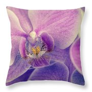 Orchid Lilac Dark Throw Pillow by Hannes Cmarits