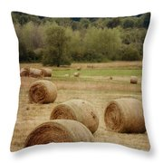 Oregon Hay Bales Throw Pillow by Carol Leigh