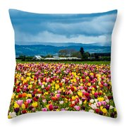 Oregon Tulip Farm - Willamette Valley Throw Pillow by Gary Whitton