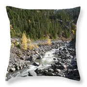 Oregon Wilderness II Throw Pillow by Peter French