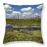 Orlando Wetlands Cloudscape 2 Throw Pillow by Mike Reid