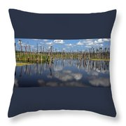Orlando Wetlands Cloudscape 5 Throw Pillow by Mike Reid