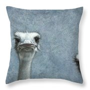 Ostriches Throw Pillow by James W Johnson