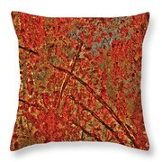 Otherworldy Light Traces Throw Pillow by Michelle Wiarda