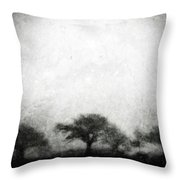 Our Moment In Patience Throw Pillow by Brett Pfister
