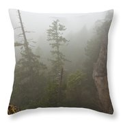 Over the Edge Throw Pillow by Randy Hall
