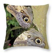 Owl Butterflies Throw Pillow by Bob Slitzan