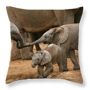 Pachyderm Pals Throw Pillow by Bruce J Robinson