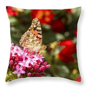 Painted Lady Butterfly Throw Pillow by Eyal Bartov
