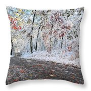 Painted Snow Throw Pillow by Catherine Reusch  Daley