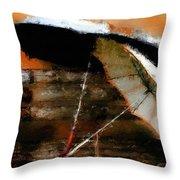 Pair Of Umbrellas Throw Pillow by Robert Smith