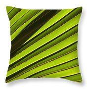 Palm Lines Throw Pillow by Mike  Dawson