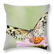 Paper Kite Butterfly On Zinnia Throw Pillow by Oscar Gutierrez