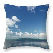 Paradise Found II Throw Pillow by Michelle Wiarda
