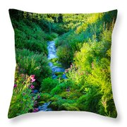 Paradise Stream Throw Pillow by Inge Johnsson