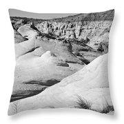 Paria Utah Iv Throw Pillow by Dave Gordon