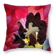 Parrot Tulip Swirl Throw Pillow by Juergen Roth