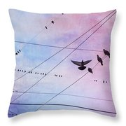 Party Line Throw Pillow by Amy Tyler