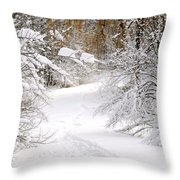 Path In Winter Forest Throw Pillow by Elena Elisseeva