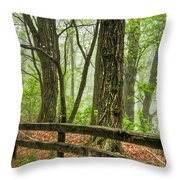 Path into the Forest Throw Pillow by Debra and Dave Vanderlaan